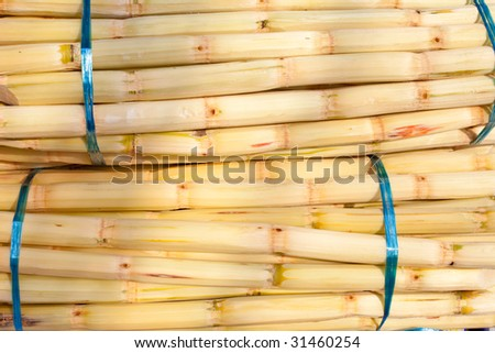 Sugar cane bundled for sale - stock photo