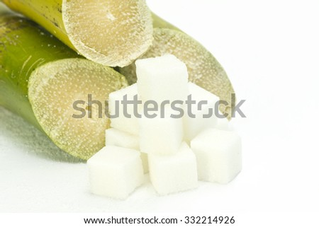 Sugar cane with white sugar cubes on white.