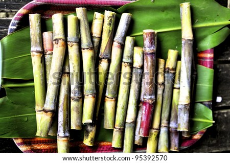 Sugar Canes just cut for production of sugar, rum or biofuel - stock photo