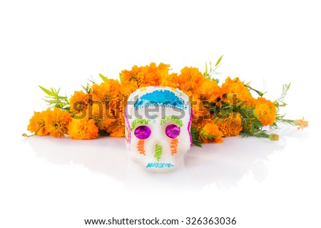 "sugar skull used for ""dia de los muertos"" celebration isolated on white with cempasuchil flowers - stock photo"