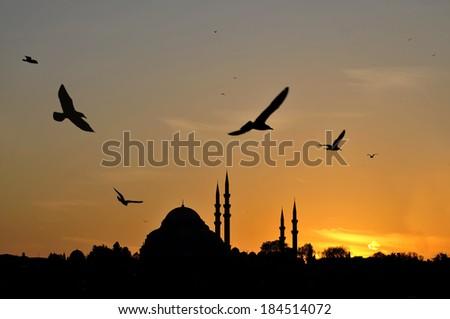 Suleymaniye Mosque silhouette at sunset, Istanbul / TURKEY - stock photo