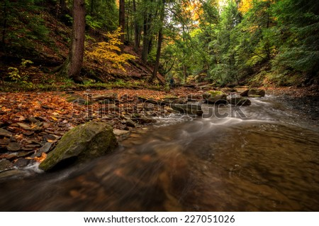 Sulpher Springs Creek in Ohio during peak fall colors. This small scenic stream looks it's best with peak autumn colors in the trees. Located in the South Chagrin Reservation Cleveland Metroparks. - stock photo