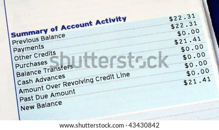 Summary of account activity of a credit card bill