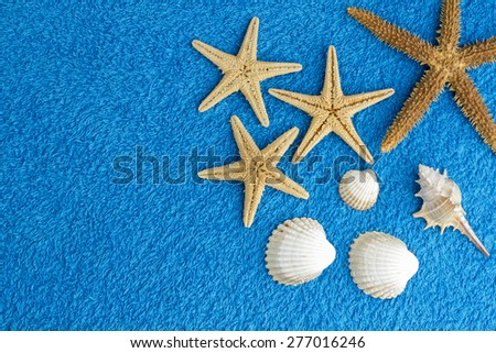 summer abstract background with sea stars - stock photo