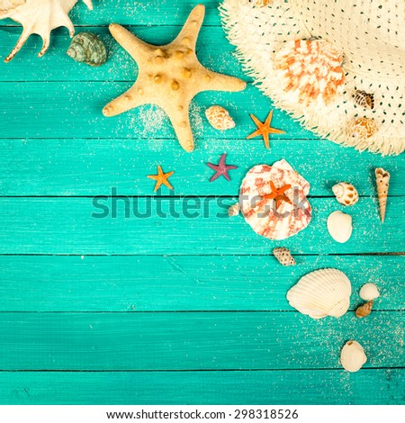 Summer accessories and shells