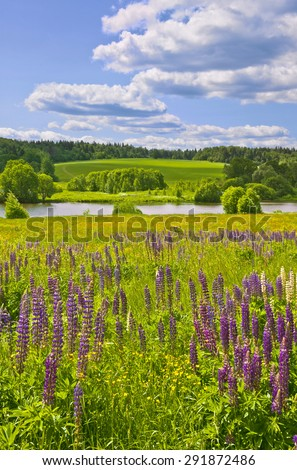 Summer afternoon. Muranovo, Moscow region, Russia - stock photo