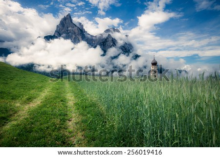 Summer alpine meadow. Dolomites mountains, Italy - stock photo