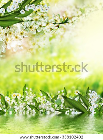 Summer. Background of flowers. lily of the valley - stock photo