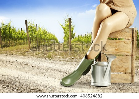 summer background of vineyard and decoration of silver can wooden box and woman legs on road  - stock photo
