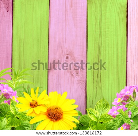 Summer background with old wooden fence, flower and green leaves - stock photo