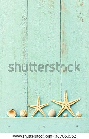summer background with seashells - stock photo