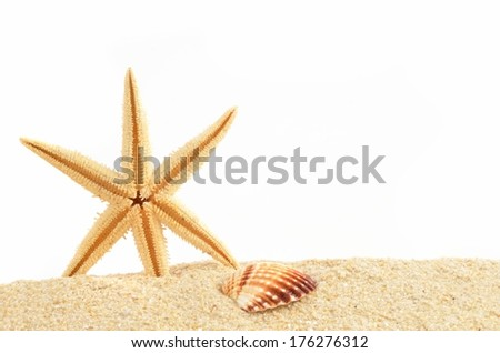 Summer background, with seastar. - stock photo