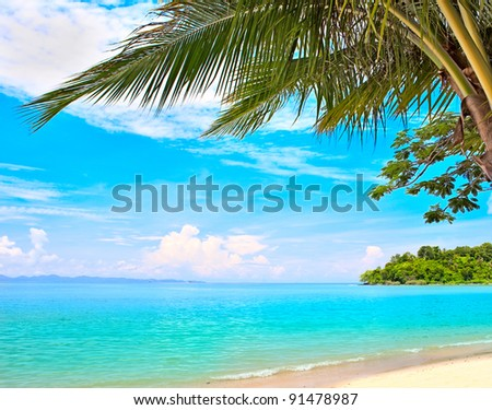 Summer beach - palm tree, mountain on remote island, white sand, sea water, tropical nature in family hotel