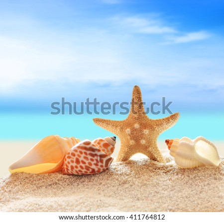 Summer beach. Seashells on a sand and ocean as background.