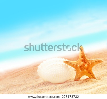 Summer beach. Starfish and seashell on the seashore. - stock photo