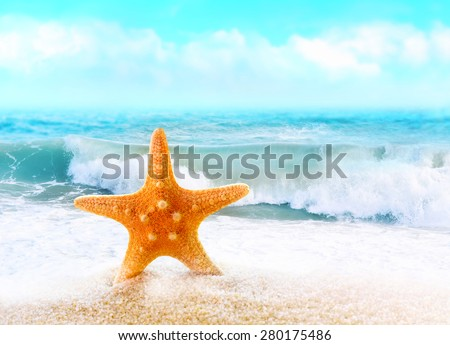 Summer beach.  Starfish on the seashore. - stock photo