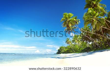 Summer Beach Tropical Paradise Seascape Concept - stock photo