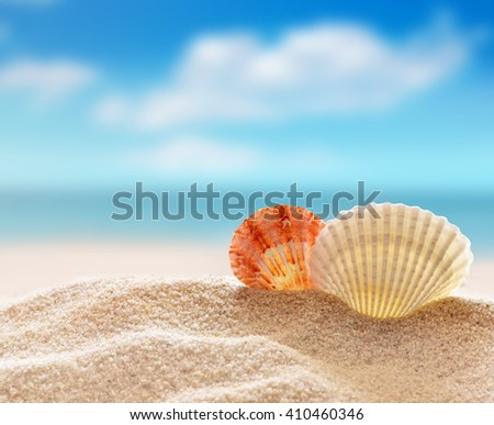 Summer beach. Two seashells on a sand and ocean as background.  - stock photo