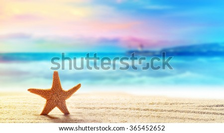 Summer beach with a starfish on a background of the tropical ocean and the beautiful sky - stock photo