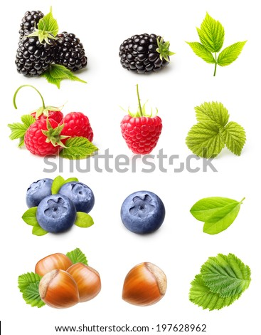 Summer berry fruits. Raspberry, Blackberry,Blueberry and Hazelnuts Isolated on White Background - stock photo
