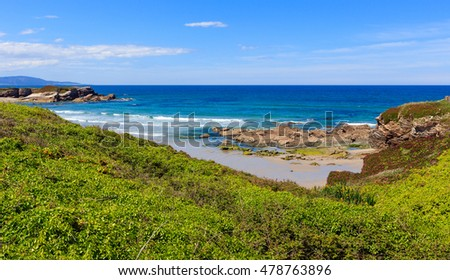 Summer blossoming Atlantic coastline landscape with pink flowers (Los Castros beach, Spain).