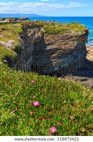 Summer blossoming Atlantic coastline landscape with pink flowers (near Los Castros beach, Galicia, Spain).