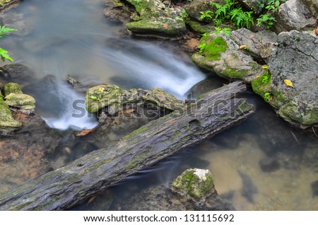 Summer brook in a forest - stock photo