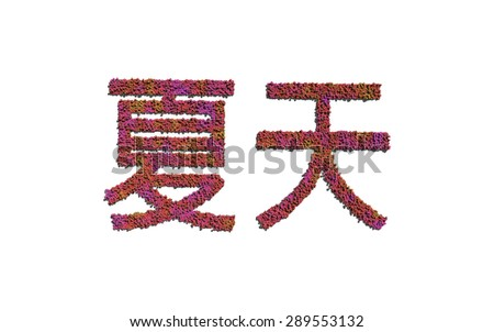 summer chinese text flower with white background concept of typography - stock photo