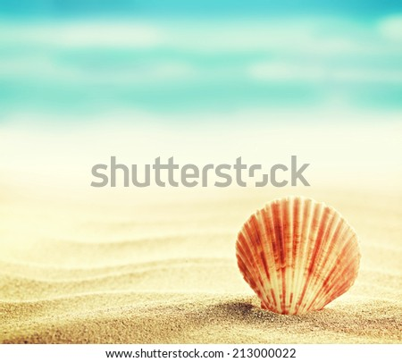 Summer concept of sandy beach, shells and starfish. Instagram vintage effect - stock photo