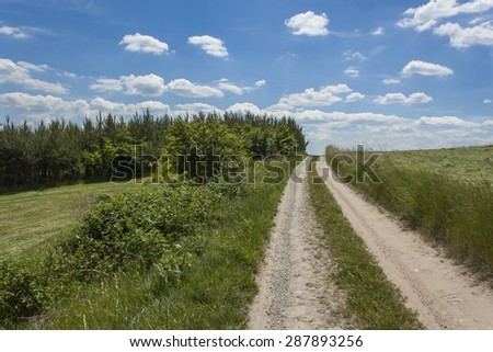 Summer day and a dirt road leading to the forest on the horizon in the background. Blue sky with clouds. Rural road in Czech Republic. - stock photo