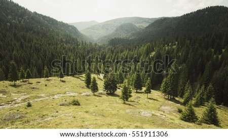 Summer day natural scenery, panoramic view. Natural green landscape with pine tree forest, hills and mountains