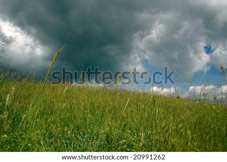 Summer field landscape with storm clouds