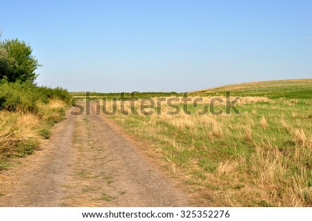 Summer field with burned grass and road in Russia
