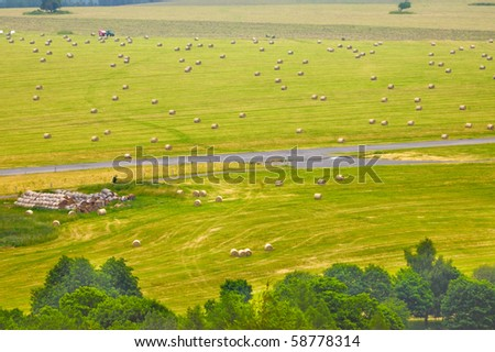 Summer field with round hay bales - stock photo