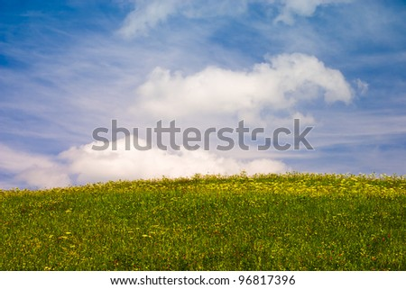 Summer flowering meadow under blue sky with fluffy clouds - stock photo