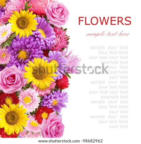 Summer flowers  (aster,sunflowers and roses) background isolated on white with sample text - stock photo