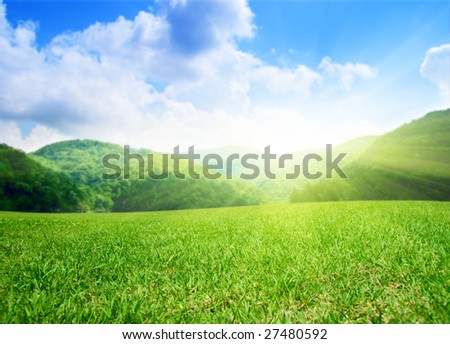 summer green field and mountains