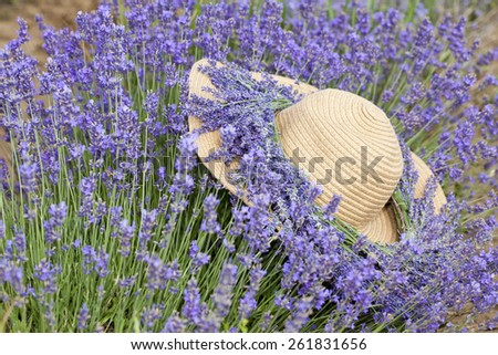 Summer hat with lavender flower wreath