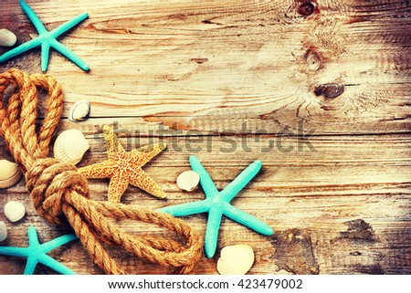 Summer holiday background with seashells and old rope. Copy space  - stock photo