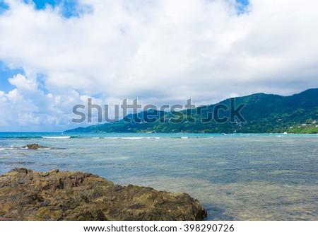Summer Jungle Panorama  - stock photo