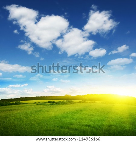 Summer landscape at sundown. - stock photo