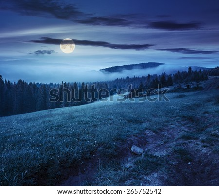 summer landscape. fog from conifer forest surrounds the mountain top at night in full moon light - stock photo