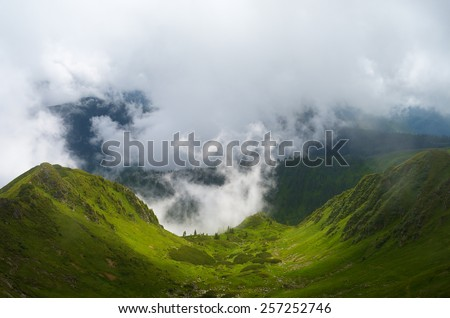 Summer landscape. Fog in mountain valley. Carpathians, Ukraine, Europe - stock photo