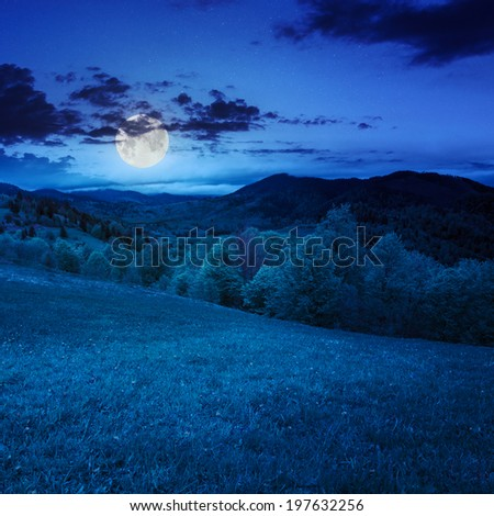 summer landscape. green grass on  hillside meadow. forest in fog on the mountain at night in moon light - stock photo