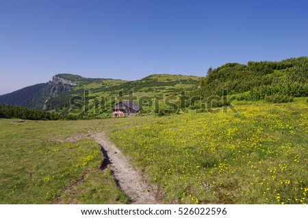 summer landscape in Romania, Ceahlau mountain path