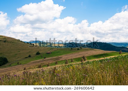 Summer landscape in the Ukrainian Carpathian Mountains.