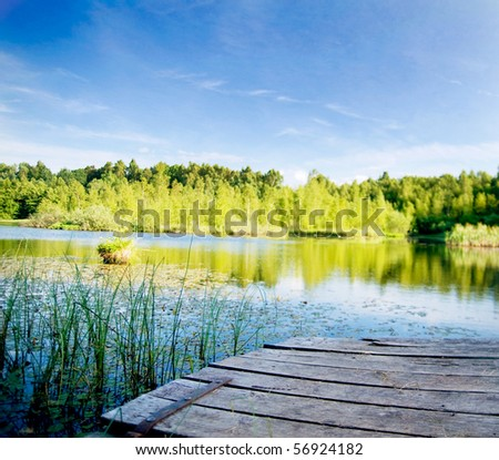 Summer landscape. Lake in the forest - stock photo