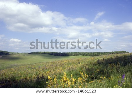 Summer landscape on hills near a pond in a village