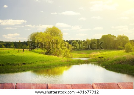 summer landscape. The lake and forest.