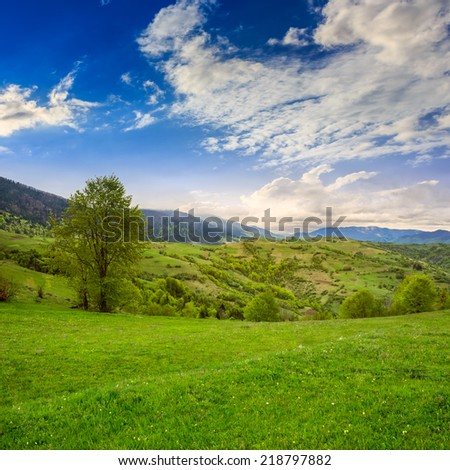 summer landscape. village near the meadow path on the hillside. forest in fog on the mountain  at sunrise - stock photo